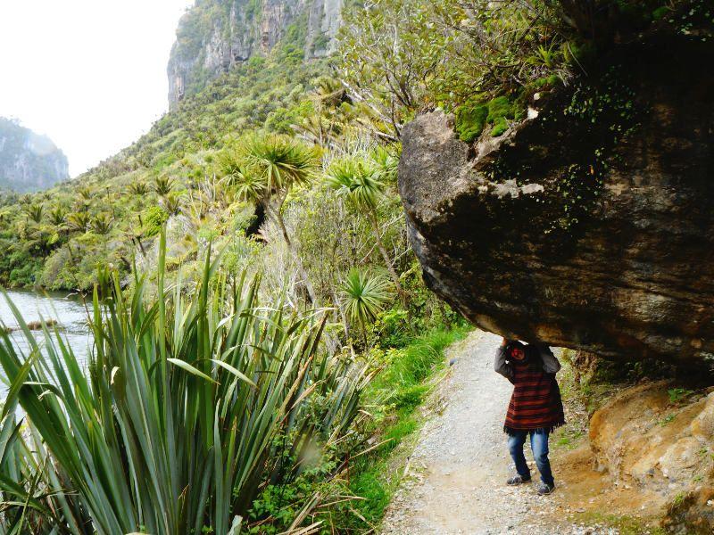 Paparoa National Park Nueva Zelanda