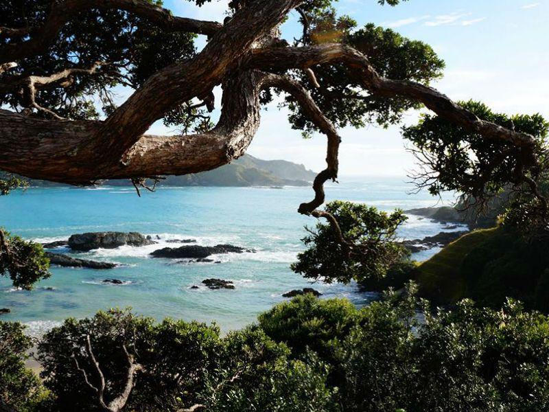 Matai Bay Nueva Zelanda