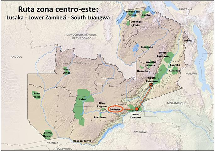 que ver en el parque nacional south luangwa