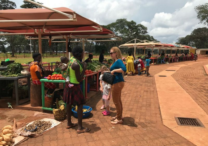 viajar a zambia 2018