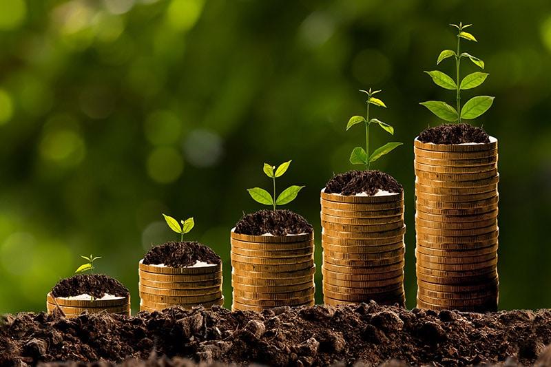 el interés compuesto se aplica al sistema financiero
